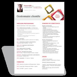 Exemple Modèle CV Word Gestionnaire de clientèle