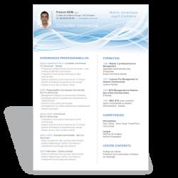 Exemple de CV attaché commercial commerciale