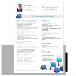 CV Commercial Itinérant