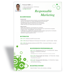 Modèle CV Word Responsable Marketing