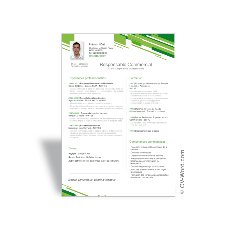 exemple cv manager commercial